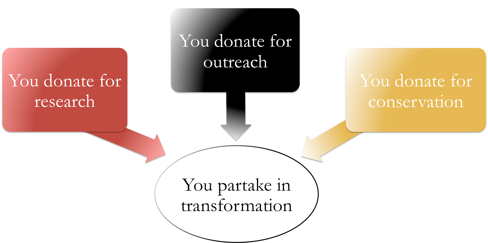 Diagram donate